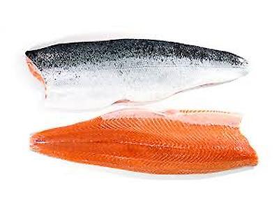 Salmon Salar