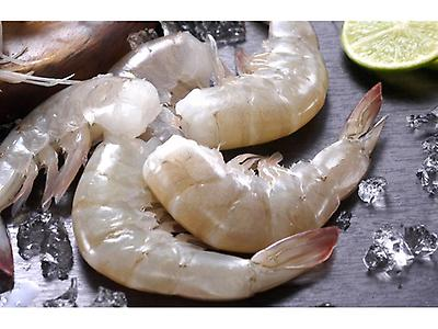 Frozen White Headless Shrimp, HACCP, BAP Certified