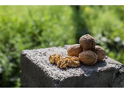 KUMEFEN walnut kernel halves  6 x 500gr doypacks