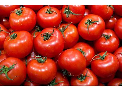 Tomates de diversas variedades