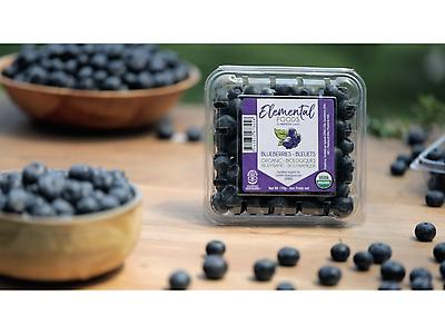 Arandanos Orgánicos y Biodinámicos (Elemental Foods)