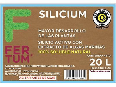 Fertum Silicium