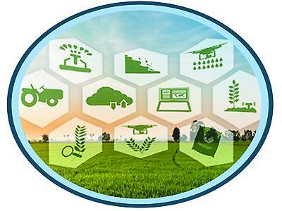 Gestión de los procesos productivos de la agroindustria