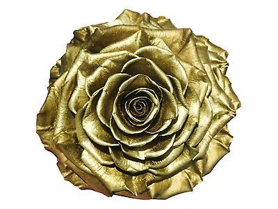 Rosa preservada tamaño Jumbo, metalizada