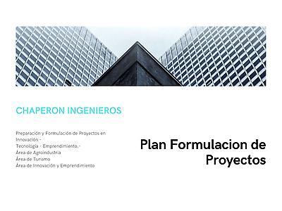 Preparacion, Formulacion y Evaluacion de Proyectos