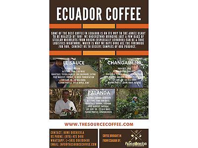 Specialty Green Coffee from Palanda - Ecuador